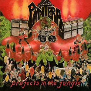 Projects In The Jungle