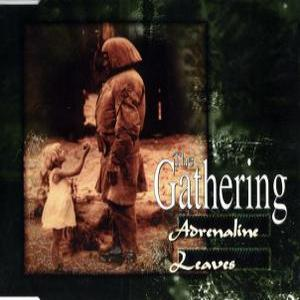 Adrenaline / Leaves